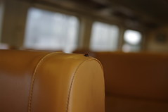 ladybug in the train