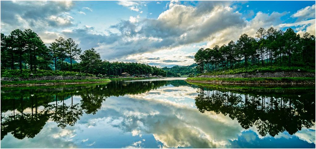 Rừng thông bản Áng - Mộc Châu | minhphuc_99kdd | Flickr