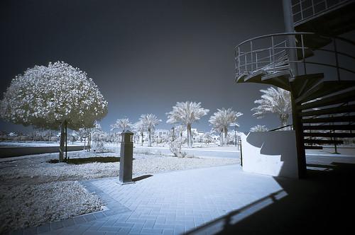 park sunset apple sunrise photography landscapes bahrain travels nikon tripod 15 tokina infrared pro mm ram grip wacom 77 core arad hoya 8gb ballhead d300 293 r72 2011 1116 macbook i7 manfortto