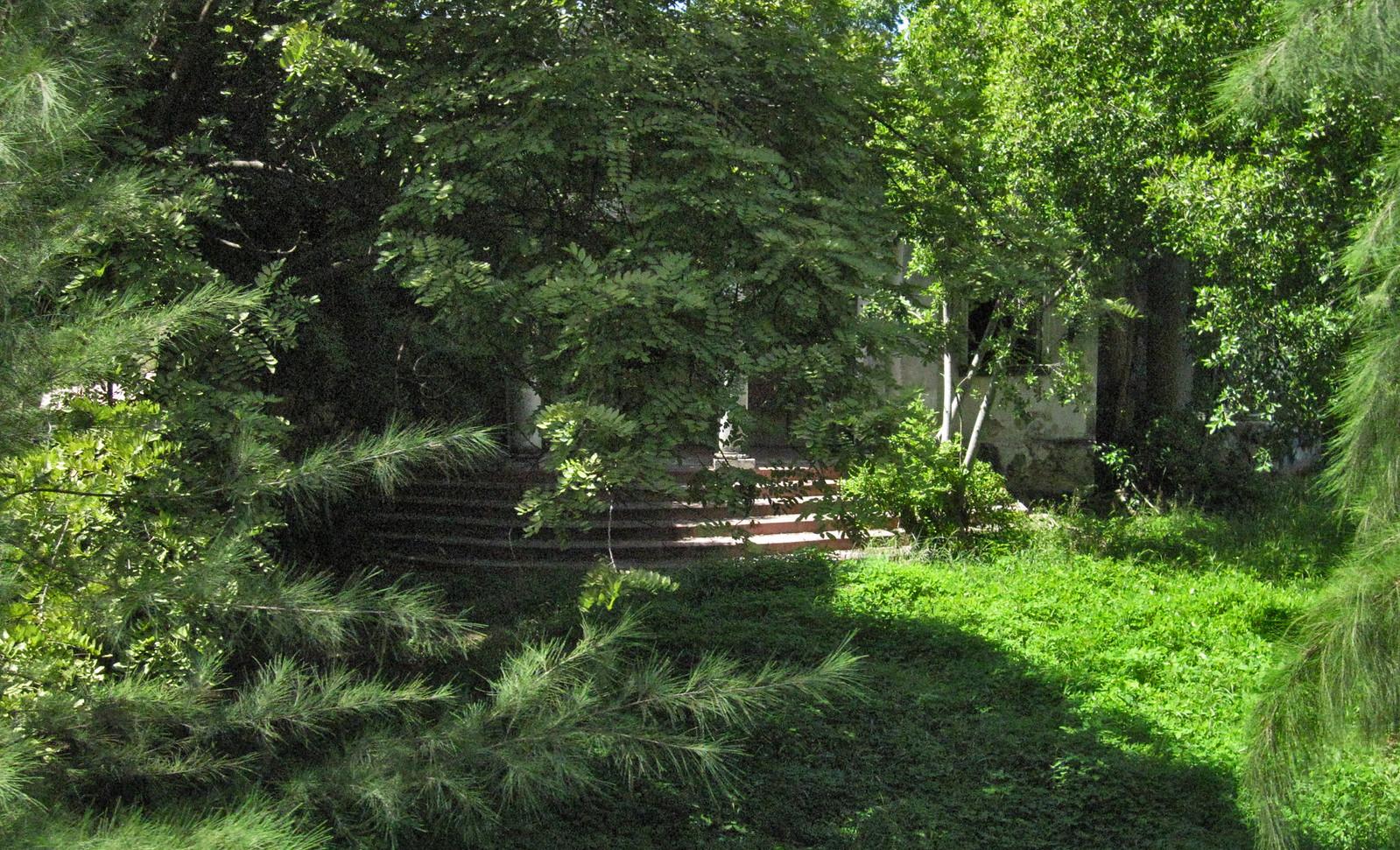 Mérida 45