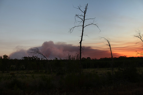 sunset texas laborday wildfire crockett