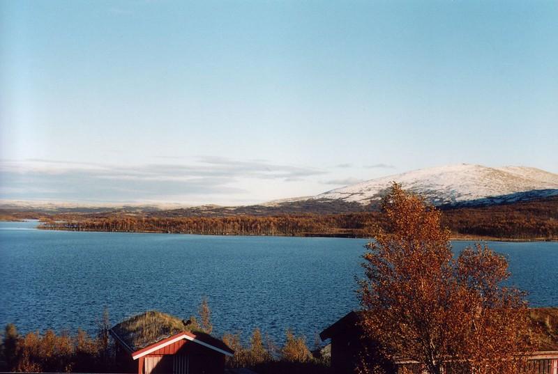 Image29-d