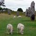 Avebury, Wiltshere, England