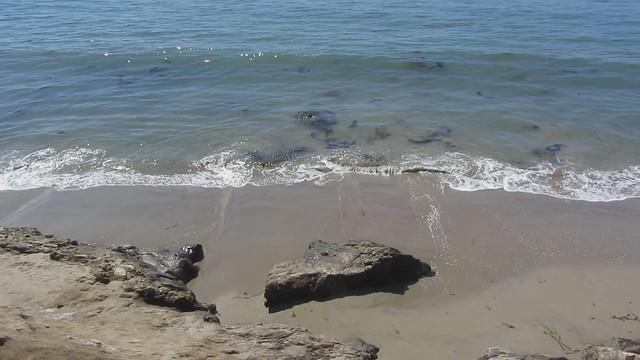 MVI_4311 wave action west goleta beach2