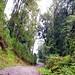 On the Road por rohaca