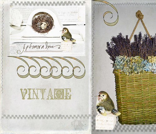 Vintage on white | by bluebirdsandteapots