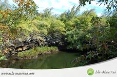 Mauritius - Ile d'Ambre - 025