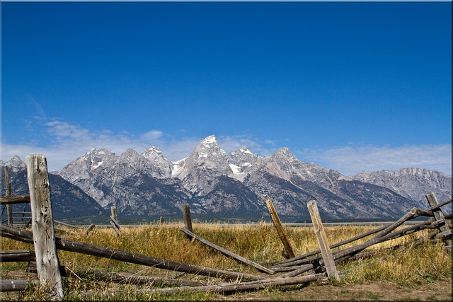 Fenced In Tetons