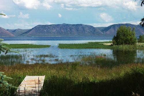 lake water idaho willow np spruce bearlake marshgrass wyojones