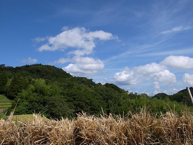 <p>n)きれいな雲</p>