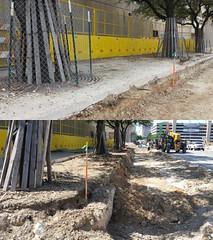 Trees under construction