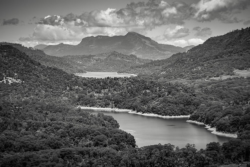travel b blackandwhite bw water monochrome landscape mono asia zoom sony monotone greenery tele srilanka nuwaraeliya centralprovince sal70300g sonya7