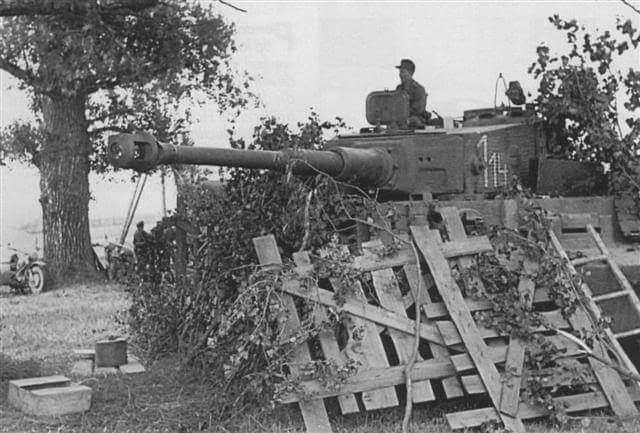 Tygr 114 ze SpzAbtu 507.