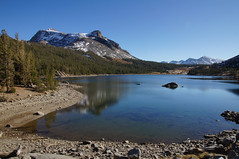 2011-10-15 10-23 Sierra Nevada 346 Yosemite National Park, Tioga Lake