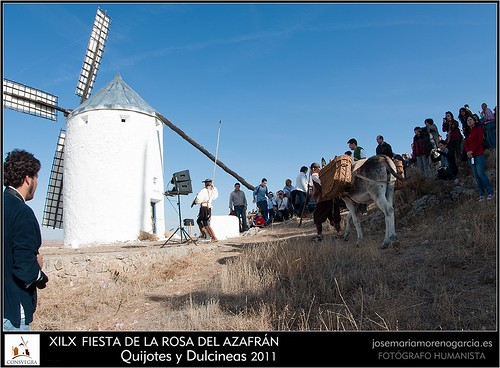 49 FIESTA ROSA DEL AZAFRAN = CONSUEGRA 2011