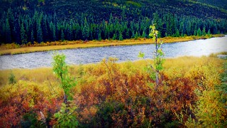 Autumn in Alaska - Landscape | by blmiers2