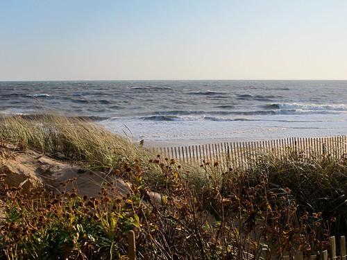Ocean view, please | by minnepixel