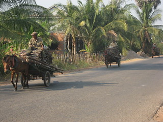 Koh Ker - Siem Reap, horses and carts
