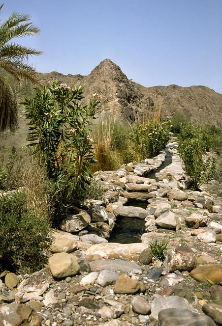 Falaj above Wakan Ghubrah Bowl Oman