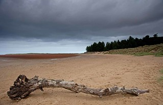 Holkham Beach   by DS Williams