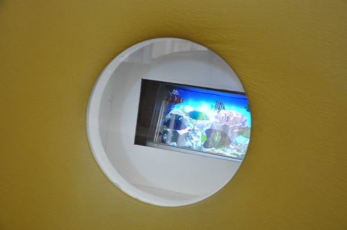 Porthole Fishes   by ASMD2011