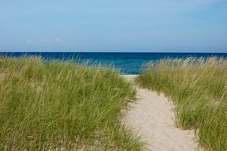 Lake Michigan Dune Grass | by desertdutchman