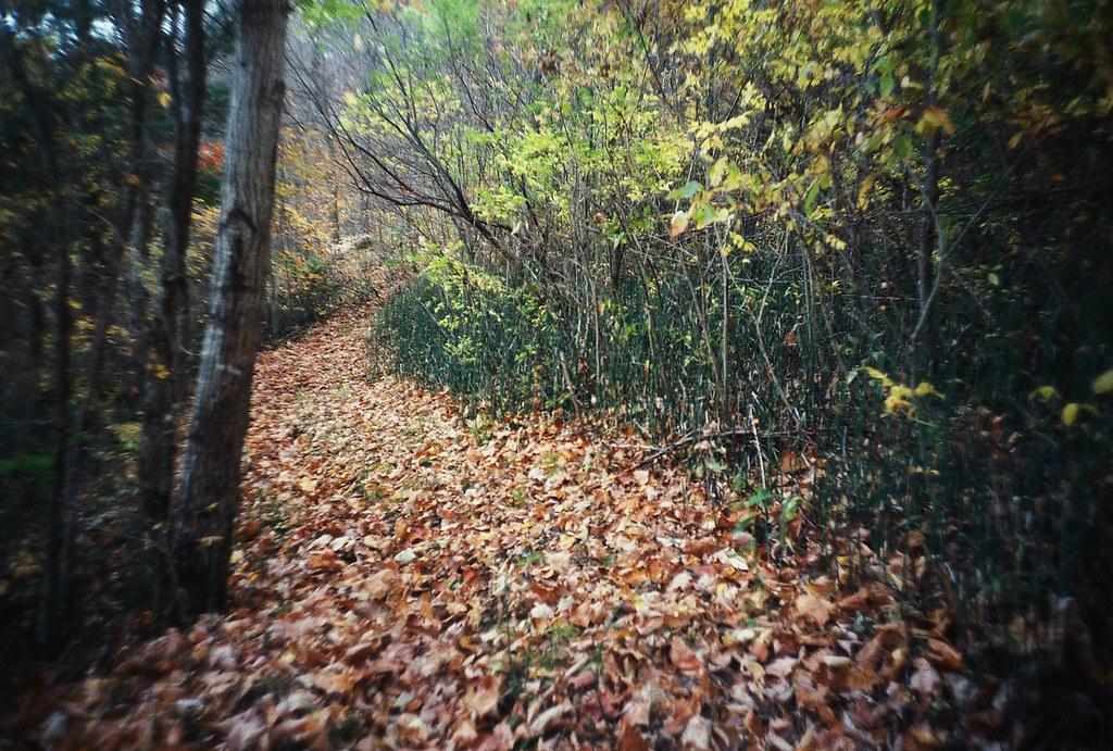 glen hills park by Amy Fichter
