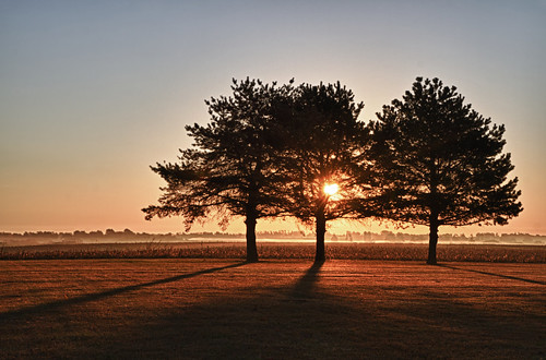 autumn trees light sunset wallpaper fall robert weather sunrise canon for golden three yahoo midwest warm frost day screensaver outdoor farm live harvest iowa clear 7d moment agriculture tones sunbeam pinetrees 1923 longshadow slowdown 2011 regionwide projectweather nothinggoldencanstay