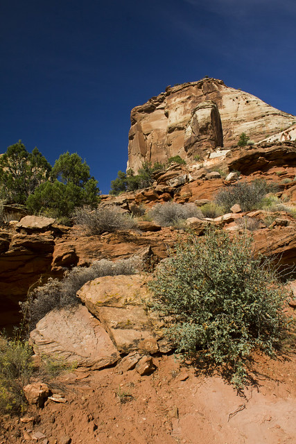 Calf Creek Hike - Grand Staircase-Escalante National Monument, Utah