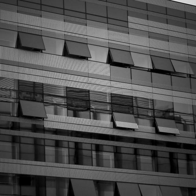 B&W Windows