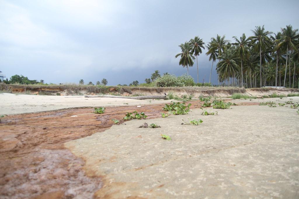 Beach at Sungai Ular