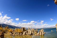 Array of tufa towers on Mono Lake