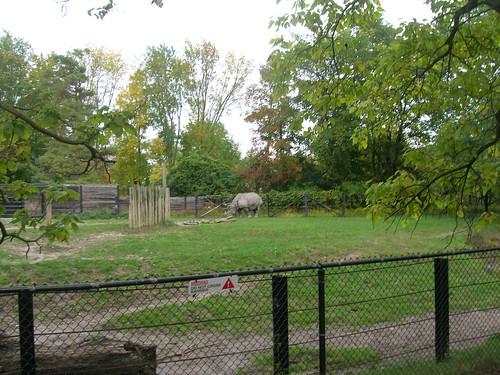 Toronto Zoo September 2011 143   by EastYorkDisneyFan