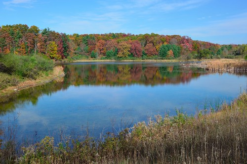 reflections fallcolors