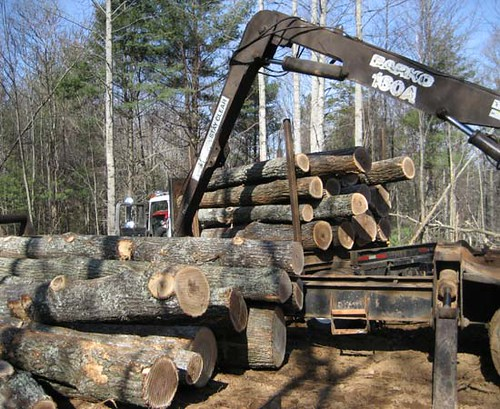 First load of sawtimber to leave the property.