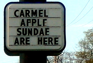 I Are Flabbergasted / Never on Sundae / This Sign Deserved to Be Shot
