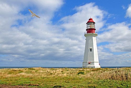 DGJ_4784 - Low Point Lighthouse | by archer10 (Dennis)