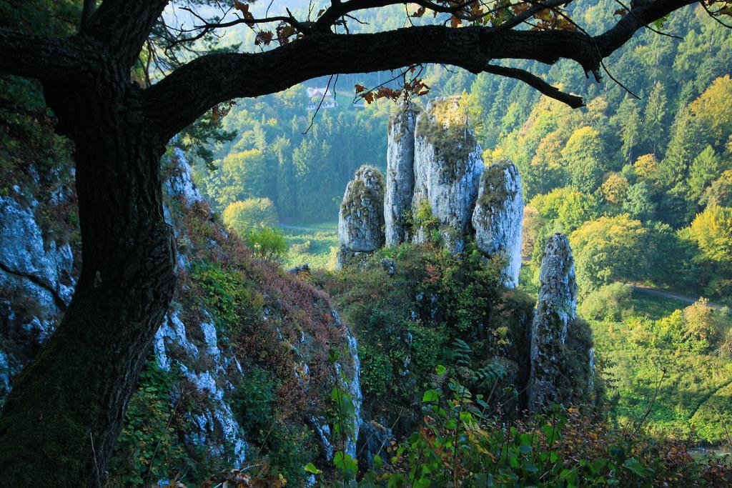 Ojcowski Park Narodowy    Ojc U00f3w National Park  Poland
