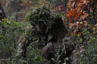 From PIGs to HOGs the Scout Sniper way [Image 4 of 7]   by DVIDSHUB