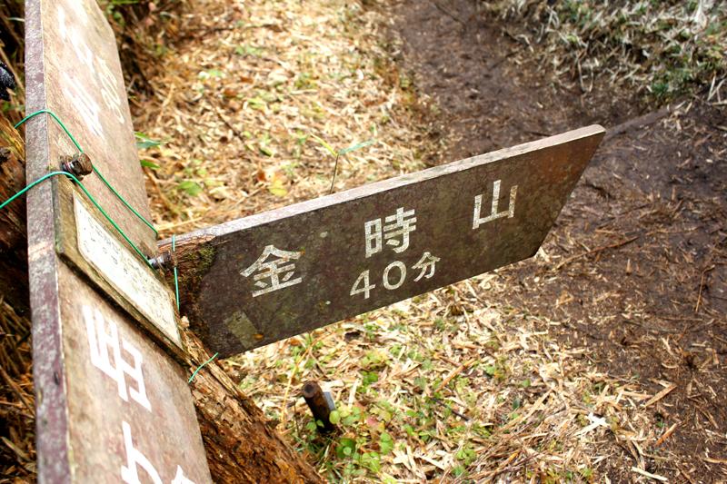 20111112_金時山_0015