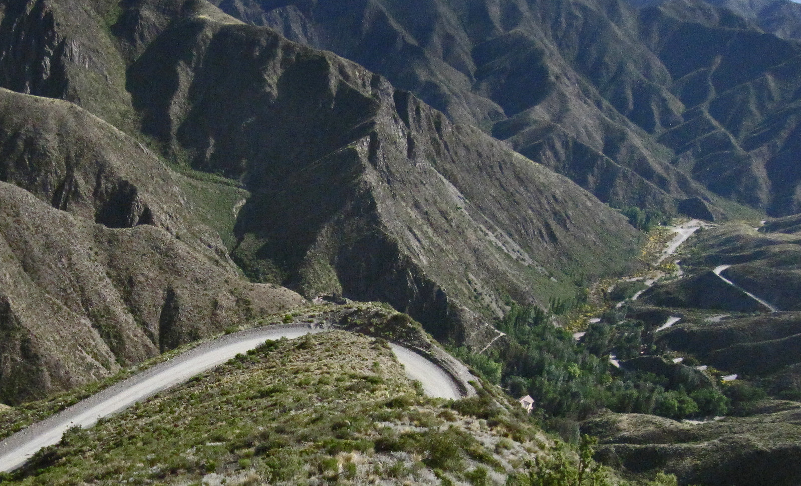 Mendoza 274