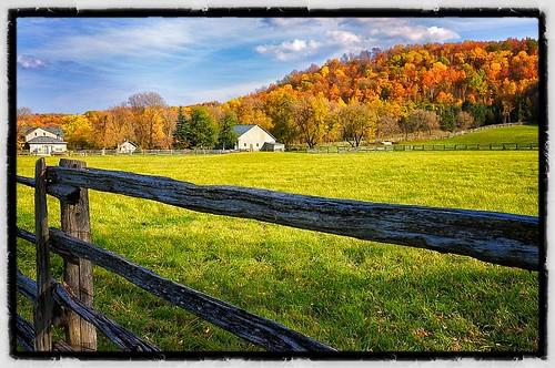 autumn ontario fall season autumnleaves hockleyvalley