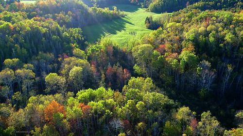 autumn trees fall colors novascotia view fallcolors aerial farmland foliage fields aerialphoto sunlit antigonish nspp lowersouthriver antigonishcounty