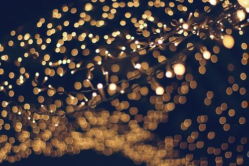 35 Days Until Christmas - Christmas Lights | by Chris_J