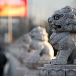 CHINA-2011_1218