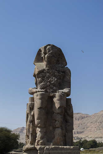 Memnon | by sharonjanssens