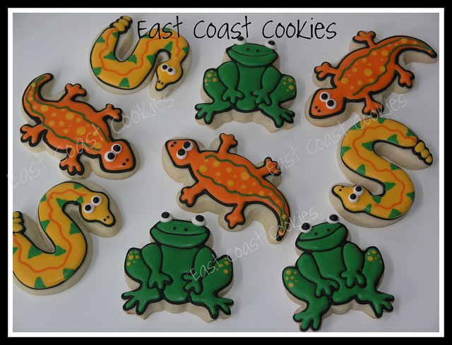 Reptile Party cookies