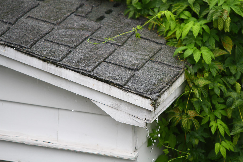 Rainwater dripping off a shed roof
