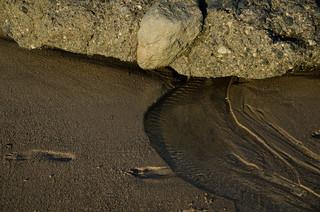 Laguna Beach | by reidab