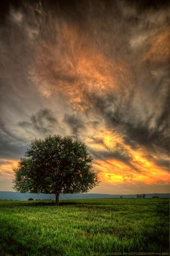 sunset mountain tree clouds landscape virginia nikon loudouncounty tomlussier